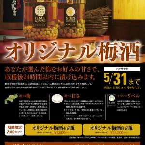 株式会社アワグラス オリジナル梅酒フライヤー
